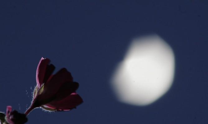 Παύσεις Σελήνης Ιανουαρίου: Τι να προσέχετε όταν είναι κενή πορείας