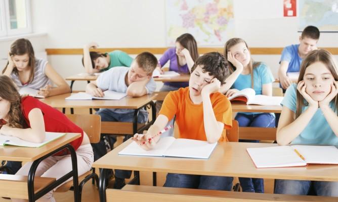 Τα ζώδια ως μαθητές στην τάξη