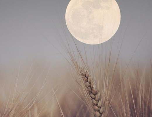 Διέλευση της σελήνης από τους Διδύμους- Επικοινωνία και κοινωνικότητα στα ύψη!