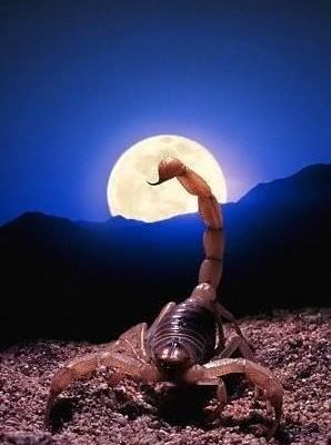 Διέλευση της Σελήνης από τον Σκορπιό!